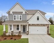 117 Riverland Woods Court, Simpsonville image