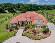1516 W Trapnell Road, Plant City image