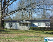 103 Co Rd 451, Clanton image