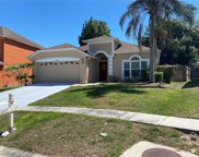 1047 Grand Canyon Drive, Valrico image