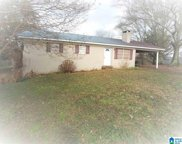 205 Tugalo Rd, Oneonta image