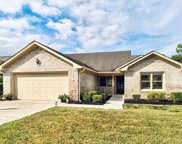 347 Chattooga Place Drive, Wilmington image