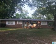 401 Cherokee Dr, Trussville image