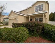 11168 Creek Haven Drive, Riverview image