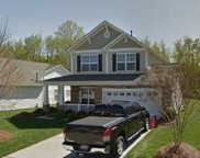 320 Sand Paver  Way, Fort Mill image