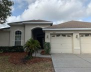 12823 Flamingo Parkway, Spring Hill image