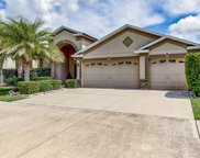 9605 Orange Jasmine Way, Tampa image