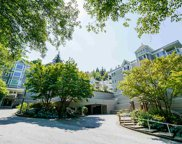 3099 Terravista Place Unit 205, Port Moody image