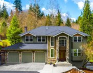 15423 232nd Ave NE, Woodinville image