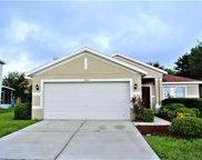 11401 Bright Star Lane, Riverview image