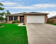 8403 Jacaranda Way, Arlington image