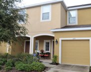 6917 Holly Heath Drive, Riverview image