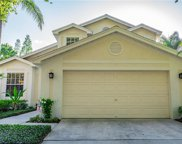 17706 Emerald Green Place, Tampa image