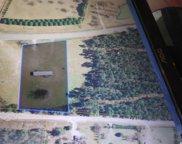 Lot 1 Nichols Hwy., Galivants Ferry image