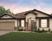 11509 Citrus Fields Place, Orlando image