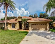 171 Willow Bend Way, Osprey image