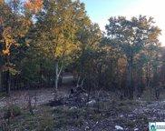 Laurel Cir Unit 8.03 acres, Jacksonville image
