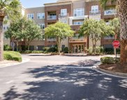 200 River Landing Drive Unit #308d, Charleston image