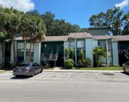2430 Lemon Tree Lane Unit 2430, Orlando image