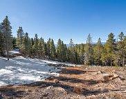 11275 Bear Run Trail, Conifer image