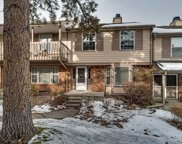7063 East Briarwood Drive, Centennial image