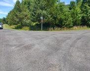 5601 Dogwood Tree   Lane, Mineral image