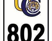 802 Thomas Boyd Dr, Baton Rouge image