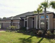 19416 Whispering Brook Drive, Tampa image