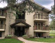 29656 Buffalo Park Road Unit 304, Evergreen image