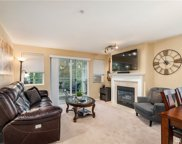 4423 249th Terr SE Unit 11203, Issaquah image