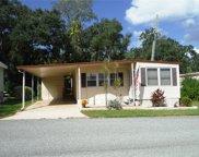 86 Cedar Elm Drive Unit 29, Safety Harbor image