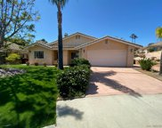 1162     Meadow Lake Dr, Vista image