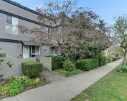 2379 Cypress Street, Vancouver image