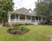 1420 Downs Rd, Mount Olive image