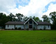 1313 Wright Country Road, Ramseur image