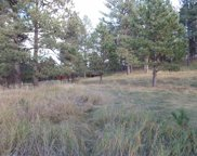 112 Trails End, Custer image