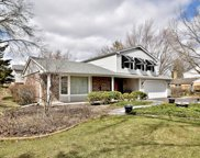 1553 Chickasaw Drive, Naperville image