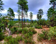 64 Forest Trail Camp Unit #64, Pine image