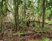 7 X N Lake Roesiger Rd, Snohomish image