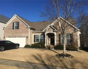 10543  Tintinhull Drive, Indian Land image