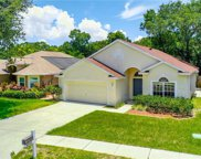 4606 Dunnie Drive, Tampa image