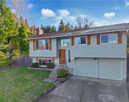 17918 146th Ave NE, Woodinville image