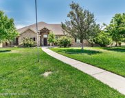 9151 Bridle Trails Dr, Bushland image