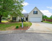 116 Red Holly Ridge Court, Greer image