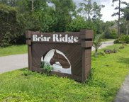 15306 BRIAR RIDGE CIR, Fort Myers image