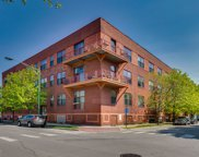 1061 West 16Th Street Unit 204, Chicago image