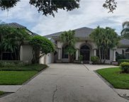 17404 Heather Oaks Place, Tampa image