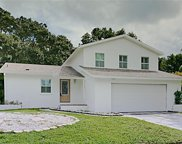 4007 Windtree Drive, Tampa image