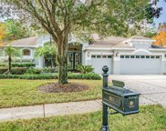 6621 Thornton Palms Drive, Tampa image