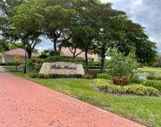 111 Old Meadow Way, Palm Beach Gardens image